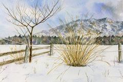 冬のキープ農場